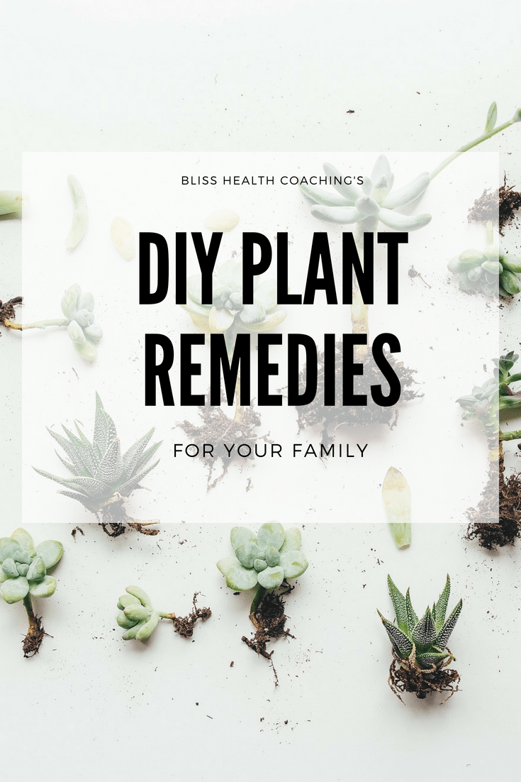 Do you want to add essential oils and herbs to your home medicine cabinet? Learn how you can start making your own home remedies and DIY recipes for your family.